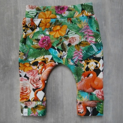 Picture of broek Flamingo maat 50